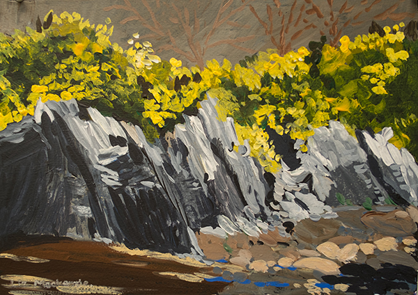 Rocks and Gorse